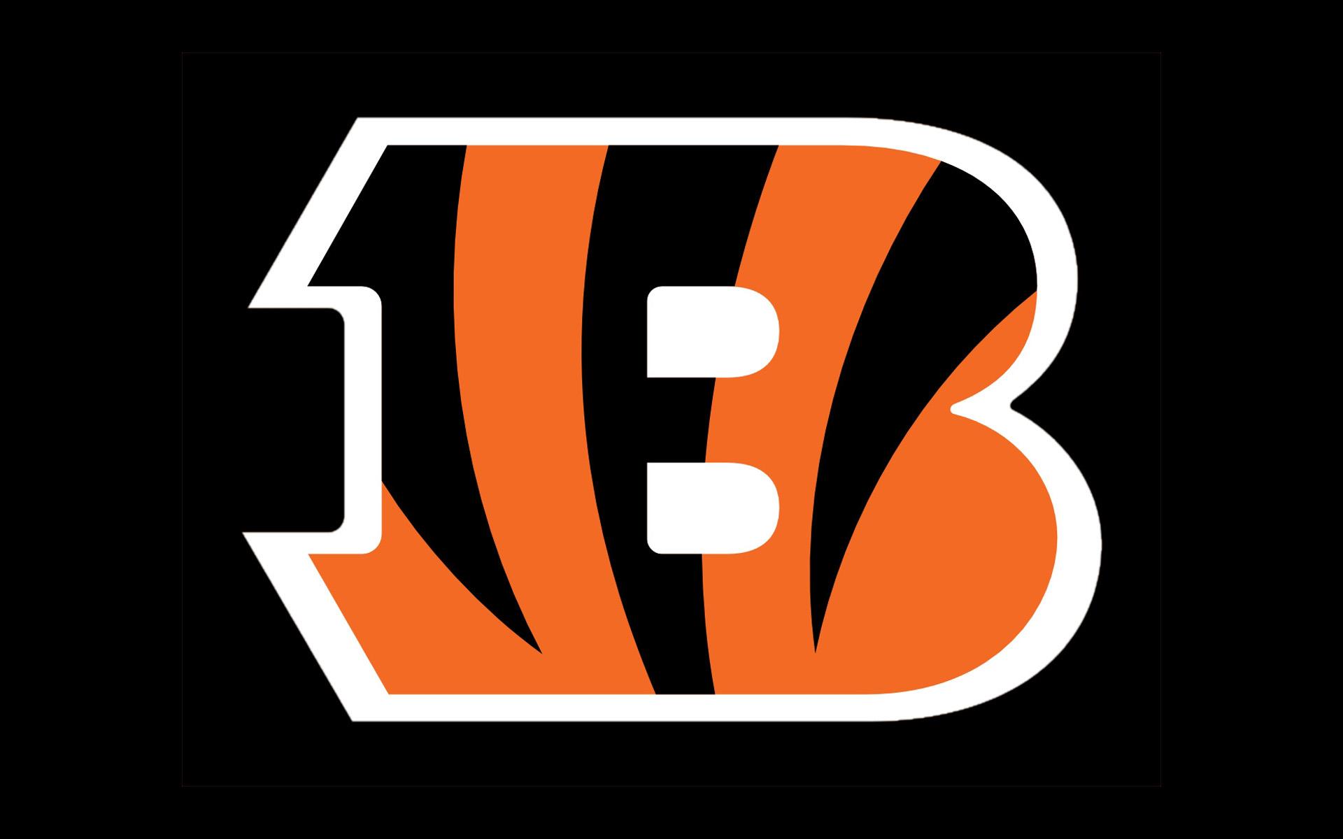 NFL Team Preview Cincinnati Bengals